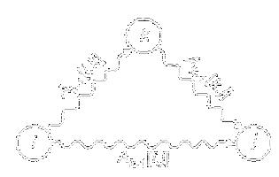 Алгоритм Флойда-Уоршелла на С++