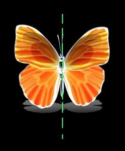Связь законов сохранения симметрии пространства и времени
